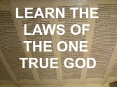 Learn God's Laws Commandments and Rules