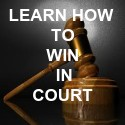 Learn How To Win                 In Court